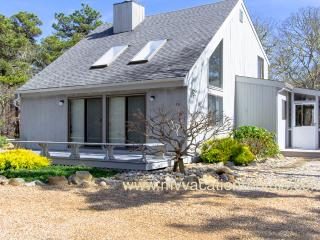 BOGUJ - South Beach Contemporary,  Light Filled Interior,  Screened Porch and - Edgartown vacation rentals