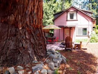 Cozy Cottage with Deck and Internet Access - Monte Rio vacation rentals