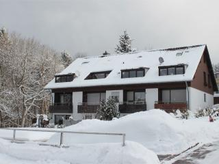 Vacation Apartment in Sankt Andreasberg - idyllic, stylish, comfortable (# 5156) - Wildemann vacation rentals
