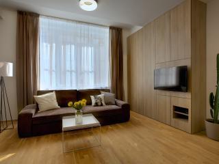 Nice 3 bedroom Condo in Prague - Prague vacation rentals