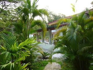 Nosara natural: art, pool, private+secure!monkeys! - Nosara vacation rentals