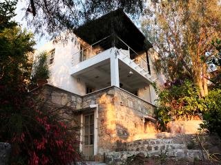 Bodrum-Elegant villa with open sea-view and garden - Bodrum vacation rentals
