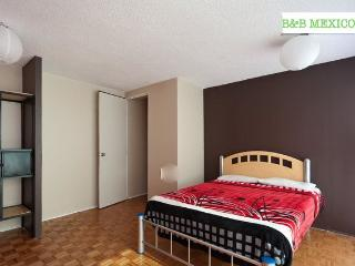 BB Mexico s/b,Roma norte Courtesy airport pick up - Mexico City vacation rentals