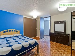 BB Mexico Roma norte, 2 single beds - Mexico City vacation rentals