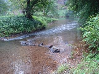 Peaceful mountain home on beautiful creek - Otto vacation rentals