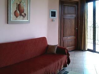 1 bedroom apartments with mountain view-Arachova-P - Arachova vacation rentals