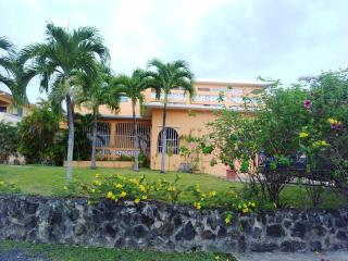 Comfortable studio apartment with use of pool - Isla de Vieques vacation rentals