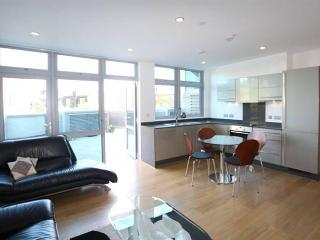 Charming Apartment in Zone 2. - London vacation rentals