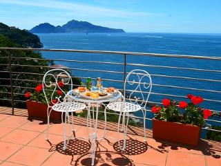 Luxury Villa with Amazing Views! - Sorrento vacation rentals