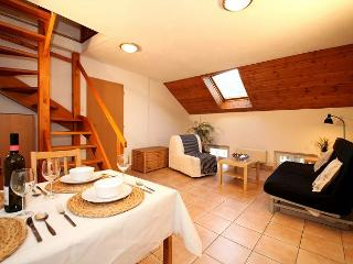 KAROLINA 3 BR 4min walk from Charles Bridge - Prague vacation rentals