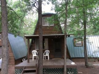 Nixon's Candlewood Cabin - Pinetop vacation rentals