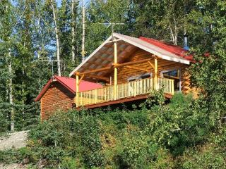 Cabin in the Woods - Palmer vacation rentals