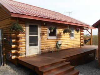 Beautiful Cabin with Deck and Internet Access - Palmer vacation rentals