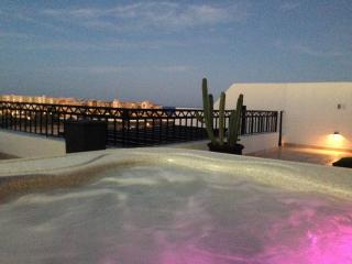 Affordable Luxurious Penthouse, walk to beach - La Joya vacation rentals