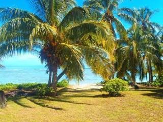 The Doctors Beach House   RIGHT ON THE BEACH - Rarotonga vacation rentals