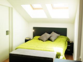 Marvelous Penthouse Duplex Just A Minute Away To T - Pamplona vacation rentals