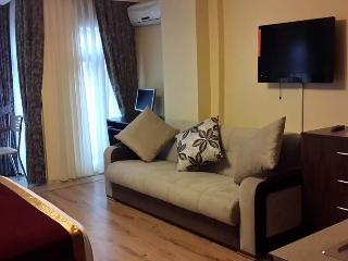 Convenient 1 bedroom Vacation Rental in Istanbul - Istanbul vacation rentals