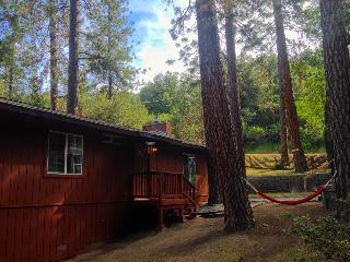 Family Cabin, wifi, A/C, 3DTV, Outdoor Games - Oakhurst vacation rentals