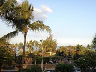 Maui Vista #1402-Ocean View, Romantic Jacuzzi, A/C - Kihei vacation rentals