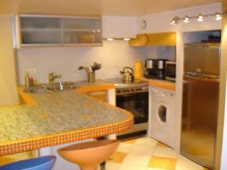 1 Bedroom Apartment Rental in Cannes France, Great Location - Cannes vacation rentals