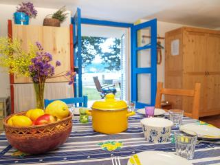 Azzurro - Dugi Otok - 10m from the Sea - Veli Rat vacation rentals