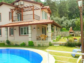 Villa Capella | Private Villa, car is not needed - Gocek vacation rentals