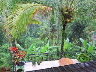 Sanggingan Cliff side villa - Ubud vacation rentals