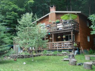 Swimming, hiking & tennis in the Catskills - Catskill vacation rentals