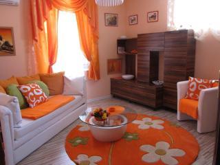 Orange flower 1 - Top center of Sofia - Sofia vacation rentals