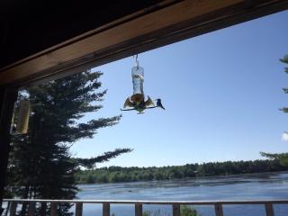 Jerry Lake Camp - Annapolis Royal vacation rentals