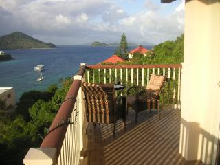 Pt. Pleasant Preferred ocean view condo in ST Thomas... Free Wifi and Washer Dryer.... - Saint Thomas vacation rentals