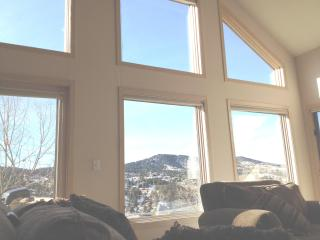 LUXURY - SIDE OF MTN-FOOTHILLS OF DENVER-VIEWS!!!! - Denver vacation rentals