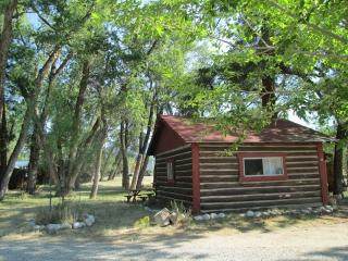 Woodlandbrook Spring Song Cabin # 15 - Buena Vista vacation rentals