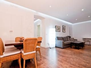 Comfortable Condo with Internet Access and A/C - Madrid vacation rentals