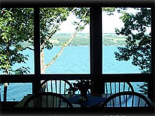 Luxury Sunflower Apartment  on Seneca Lake NY - Dundee vacation rentals