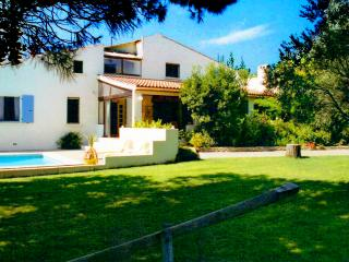 Wonderful secluded villa with private pool - Pouzolles vacation rentals