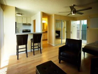 Studio Apartment Ocean Beach View - Los Angeles vacation rentals