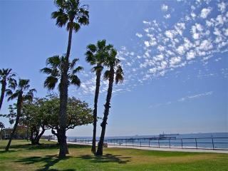 Luxurious, Remodeled Home, Steps from the Ocean - Los Angeles County vacation rentals