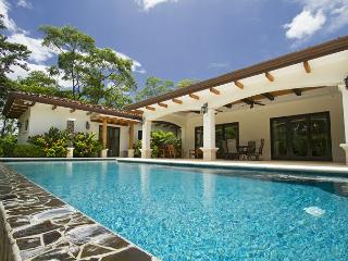 New home secluded and quiet yet close to everything - surf, golf, beach club - Tamarindo vacation rentals