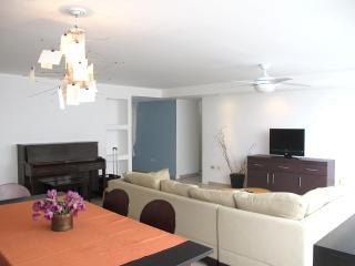 Entire beach family apartment in heart of Condado. - San Juan vacation rentals