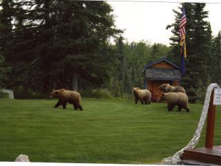 Kenai Peninsula Hand-crafted Alaskan Log Cabins - Soldotna vacation rentals
