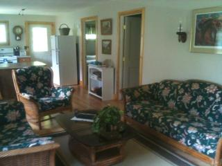 2 bedroom Cottage with Short Breaks Allowed in Honeoye Lake - Honeoye Lake vacation rentals
