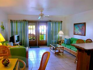 Nice Condo with Deck and Internet Access - Ambergris Caye vacation rentals