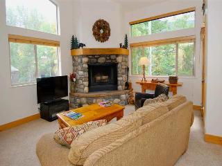 Convenient 3 bedroom Condo in Ketchum - Ketchum vacation rentals