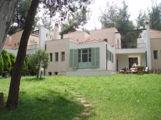 KASSANDRA SANI  VILLA IN THE FOREST, NEAR THE SEA - Loutra vacation rentals