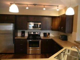Private 2-BR Condo in Downtown Kelowna Mill Creek - Kelowna vacation rentals