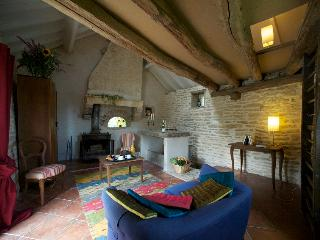 For writers, lovers or hermit  ! - Ancy-le-Franc vacation rentals