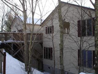 Moose Manor, Game Room, 2 Living Rooms, Wifi - Beech Mountain vacation rentals