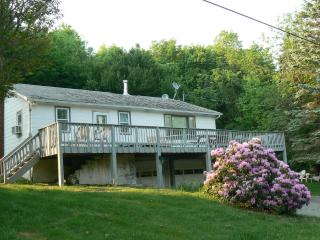 On A Road Less Traveled -Catskill Mountain Retreat - Lexington vacation rentals