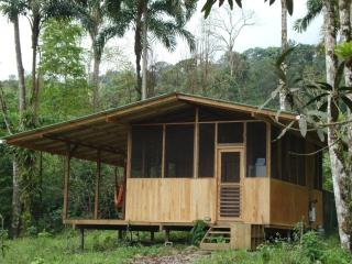 Howler Monkey Cabin next to the Jungle! - Dominical vacation rentals